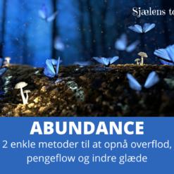 2 enkle metoder til at opnå overflod, pengeflow og indre glæde